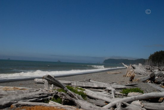 Rinalto Beach