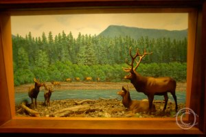 For diorama lovers everywhere!