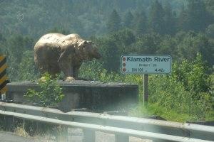 Kalmouth River Bear