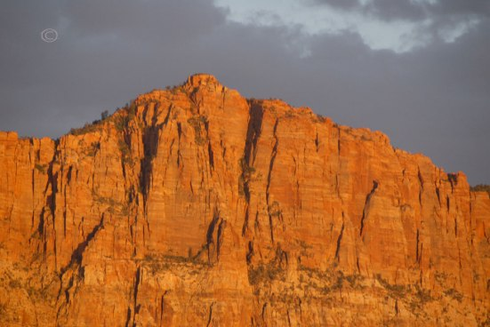 Cliffs of Zion at sunset