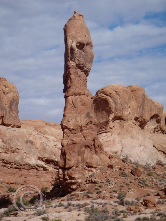 Arches National Park, UT (Photo by D.R.J.)