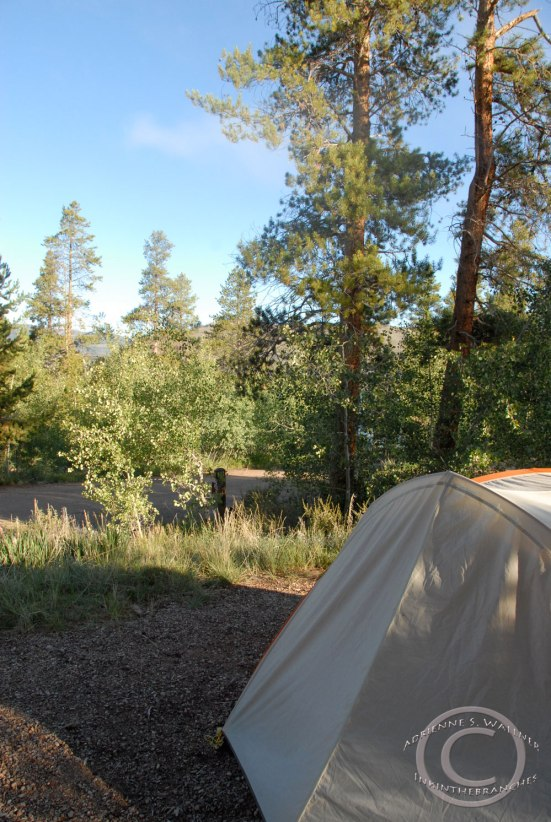 Willow Creek Campground, CO