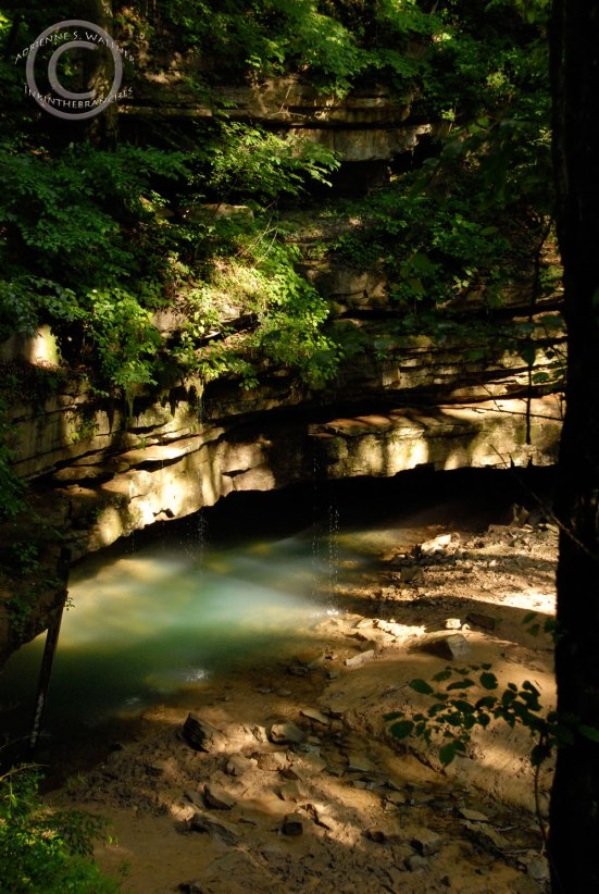 River Styx Spring, Mammoth Cave N.P.