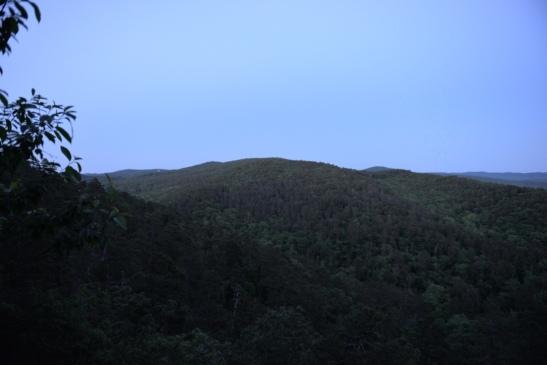 Goat Rock Trail View
