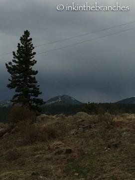 Yep, storm's here.